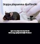 Fickfoldern; Stoppa plågsamma djurförsök