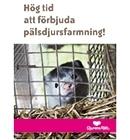 Minkkampanj  - dags att avveckla pälsdjursfarmning