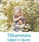 """Folder med texten """"Tillsammans hjälper vi djuren"""". På framsidan står ett barn på en äng full av blommor och kramar om ett marsvin."""