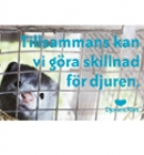 Tillsammans kan vi göra skillnad för djuren.