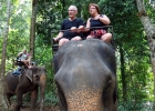 Apollo slutar med elefantutflykter
