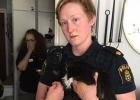 Hemtjänsten lämnade katten Maja att dö