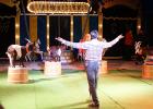 Cirkus Wictoria anmäld för djurplågeri