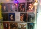 Djurens Rätt på WoW 2013 med utställningen walls of glass