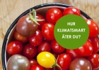 Tomater samt textrura: Hur klimatsmart äter du?