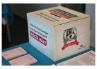 omröstning, valurna