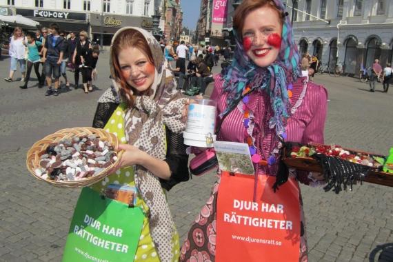 Djurens Rätt Malmö under påskafton 2011