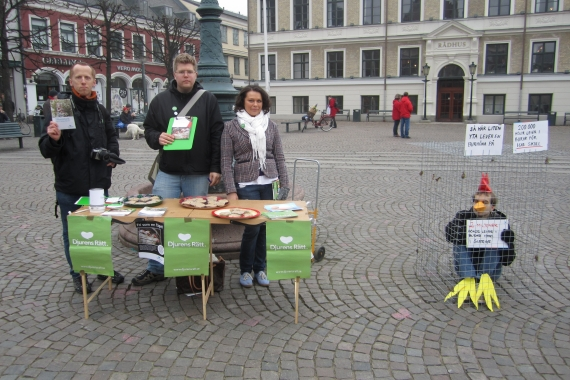 Aktion mot buräggsindustrin i Lund, tillsammans med Djurens Rätt Lund.