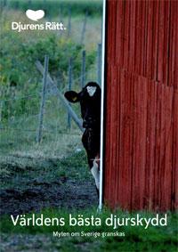 """En ko tittar fram runt en husknut i lantlig miljö. Under finns texten """"Världens bästa djurskydd""""."""